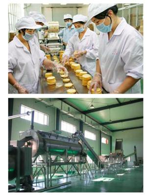 食品行业中臭氧发生器的使用介绍